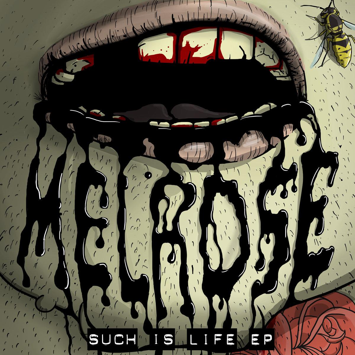 ただのイージコアという枠では収まらない存在感!UKのポップパンクバンド「Melrose」がニューEPをリリース!